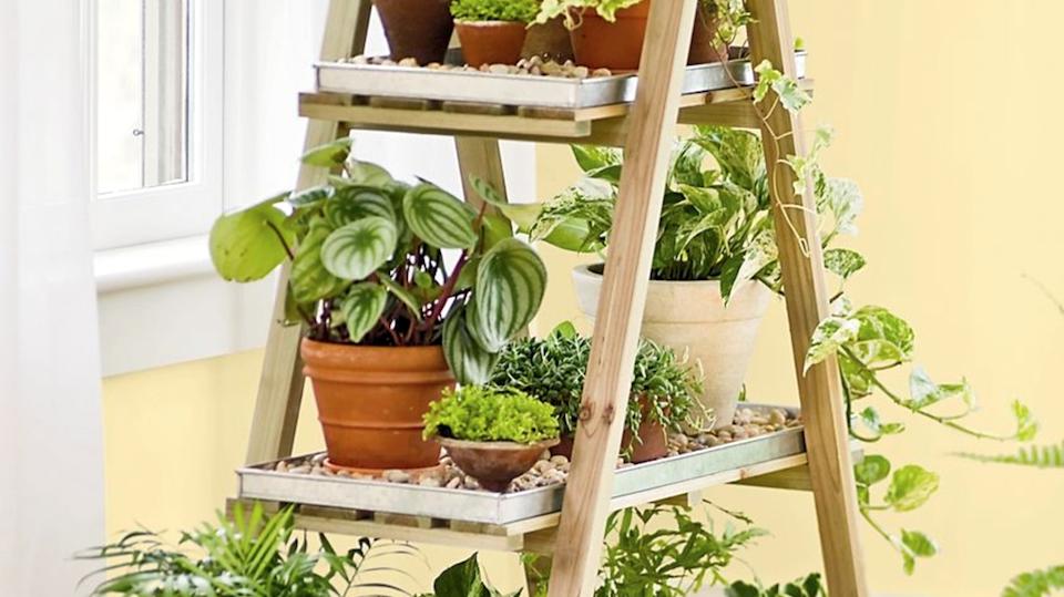 9 outils qui rendent le jardinage d'intérieur ridiculement facile